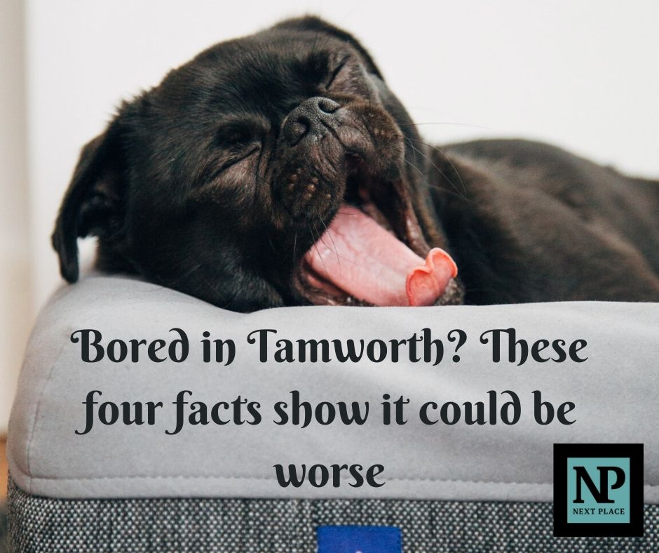 Bored in Tamworth? These four facts show it could be worse