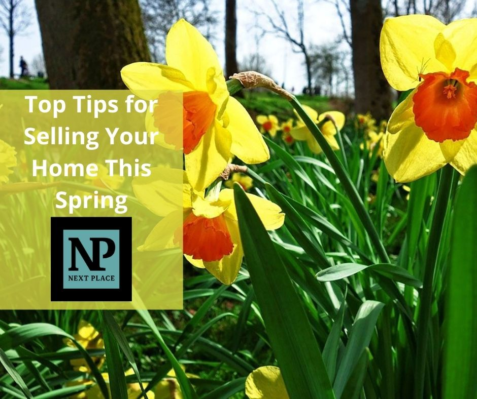 Top Tips for Selling Your Home This Spring